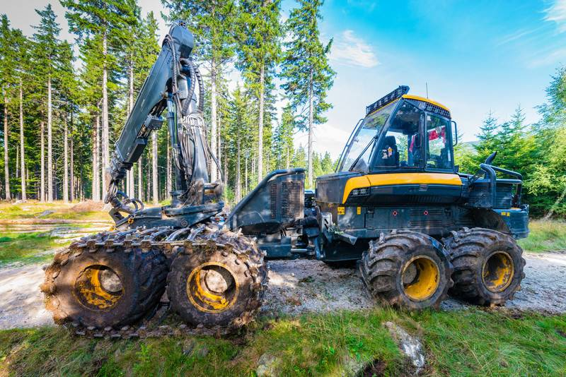 Forest_cutting._Timber_harvester._Forest_cutting_with_the_help_o_-_webb_174660.jpg